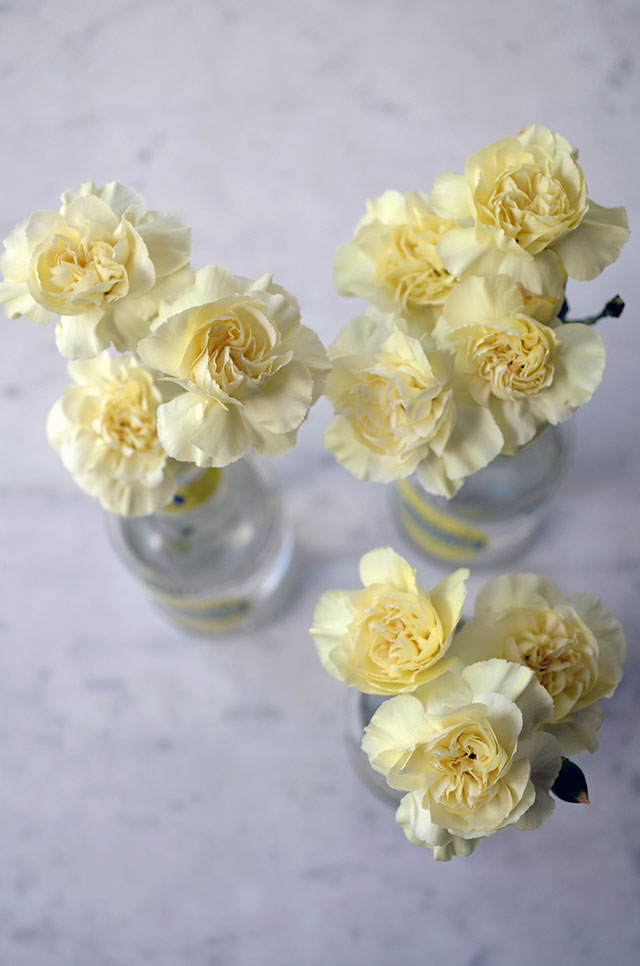 Yellow carnations on marble / Totally by Design