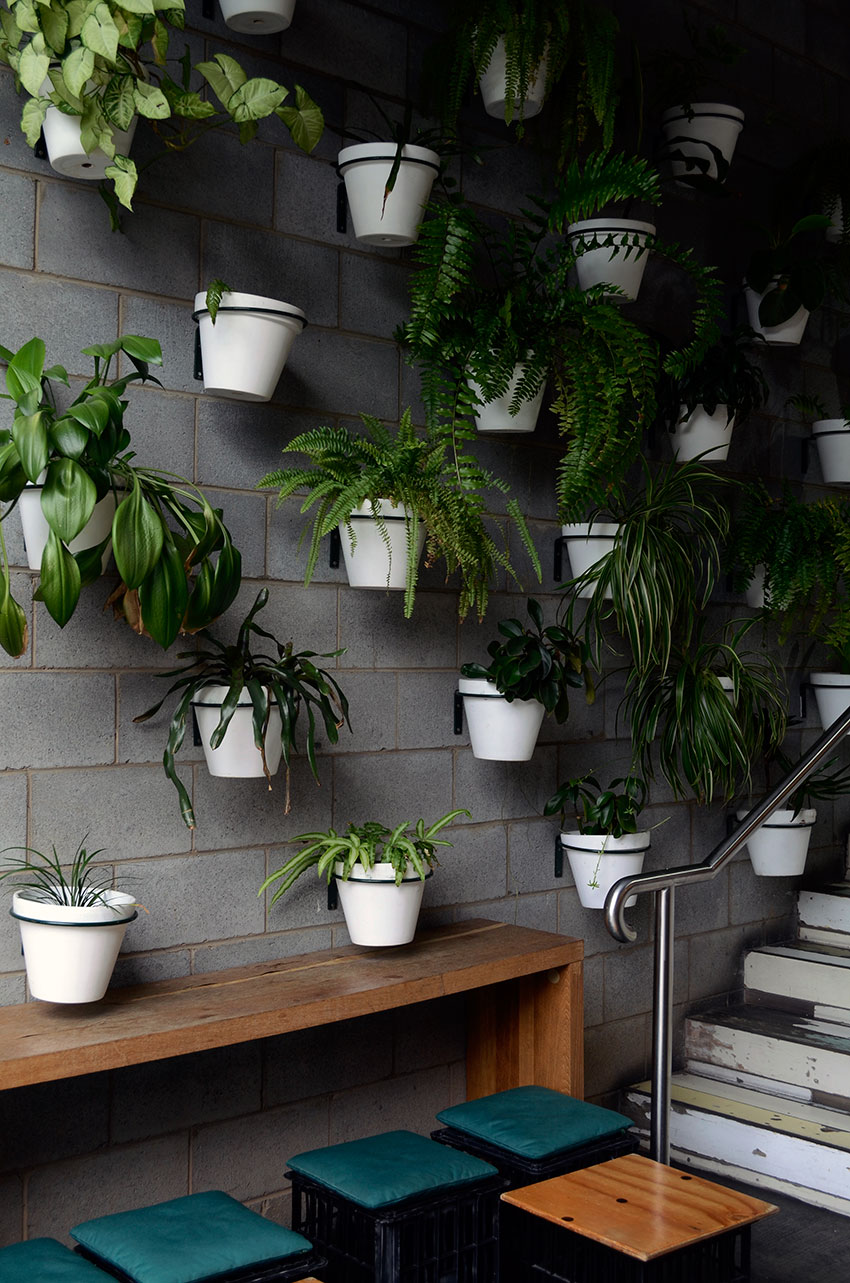 Plant wall at Sourced Grocer | totallybydesign