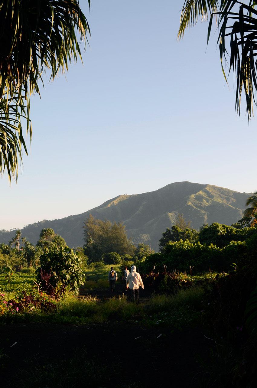 Rabaul trekking | totallybydesign